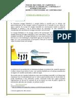 Energía Hidráulica Informe