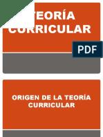 marco teorico del curriculo.pptx