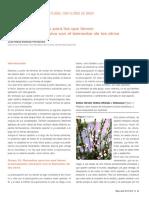 1337937991369Tema 7 Flores de Bach.pdf