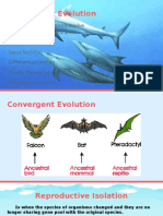 evolutionary concepts group 3