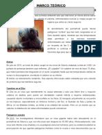 Marco Teorico Contaminacion Histotia