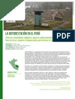 la_deforestacion_en_el_peru.pdf