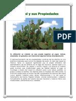 4f3caa_el--nopal.pdf