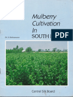 Mulberry Cultivation in South India