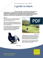 Illustrated Guide to Black Grouse