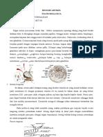 Artikel Mollusca Fisiologi