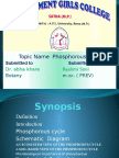 phosphorouscycle-131024101835-phpapp02