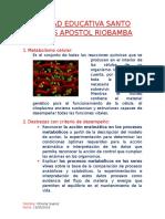 biologia metabolismo celular.docx