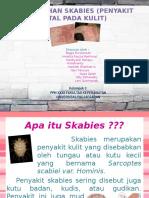 Sk Abies