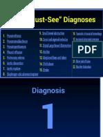 22 Diagn Plus Explic Anato