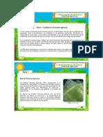Tema 1 y 2 - Generalidades de Bpa