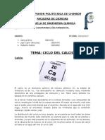 Ciclo Del Calcio (1)