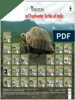 traffic_species_reptiles14 (1).pdf