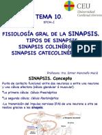 Tema 10 SINAPSIS imp.pdf
