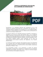 MINERAS - CAMPAÑAS DE REFORESTACION