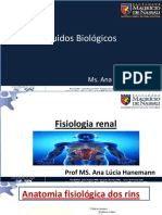 Aula 2 FB Fisiologia Renal