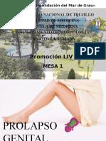 Caso Clinico Anatomia Grupo 1- PROLAPSO