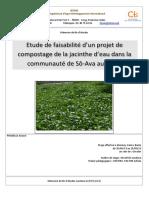 Delarue, 2013 - Etude de Faisabilité d'Un Projet de Compostage de La Jacinthe d'Eau Dans La Comunauté de Sô-Ava Au Bénin