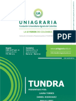 TUNDRA.pdf