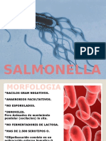 salmonellosis-131030220023-phpapp02