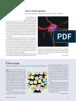 nota cientifica 1.pdf