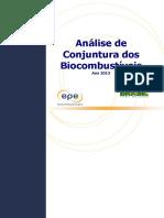 Análise de Conjuntura Dos Biocombustíveis1 - Ano 2015