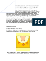 libro tacticas del basquetball