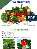 Alimenticias 2015-16 [Autoguardado]