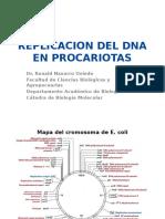 Replicacion Del Dna en Proca y Eucariotas 2014