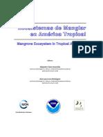 Ecosistema Manglar America Latina