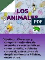 Ppt. Los Animales