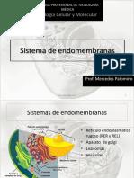 Clase Teórica 15_sistema de Endomembranas_versión 3