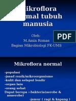 Mikroflora Normal Tubuh