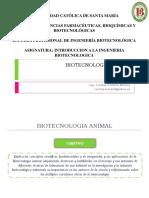 Biotecnologia Animal
