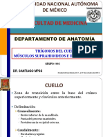 Trã-gonos Del Cuello, Mãšsculos Suprahioideos e Infrahioideos (1)