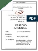 IMPACTO-AMBIENTAL-CORREGIDO