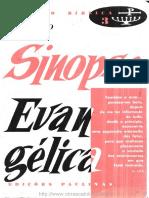 Sinopse _ Evangelica.pdf
