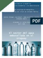 Tesis Agua Mineral Uruguay