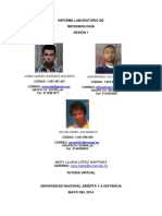 Informe - Laboratorio de Microbiologia