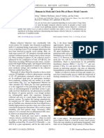 PhysRevLett.110.228701.pdf