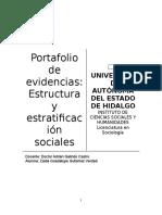 Evidencias - Estructura y estratificación sociales