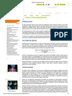 13.- Cancer Broncopulmonar