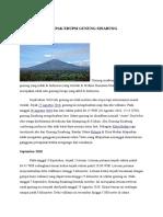 ARTIKEL Gunung Sinabung