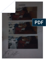 Fotos de Secciones