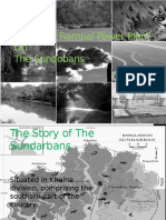 Impact of Rampal Power Plant(1)