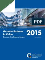 2015 BCS China Report En