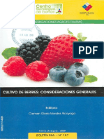 Cultivo de Berries.pdf