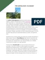 La Relación Entre Quetzalcóatl y El Maguey