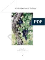 Draft Copy of a Practical Guide to Developing a Commercial Wine Vineyard