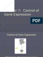 Chapter 7 Control of Gene Expression